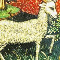 西洋占星術 12サイン 山羊座 インスパイア吉祥寺 今季洋